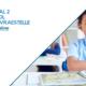 Laerskool Kwartaal 2 Eksamenvrastelle